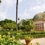Foro Umberto I and the Botanic Garden a