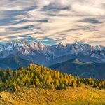10 Most Beautiful Forests in Austria
