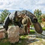 Dinosaur Park 1