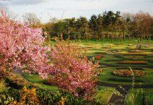 Glasgow Parks