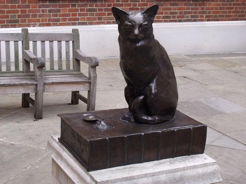 Hodge the Cat
