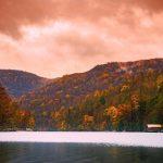 Bear Heaven campsite in Monongahela National Park